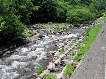 道の脇にはこんな小川が。支流が流れ込んでるのが見えた。