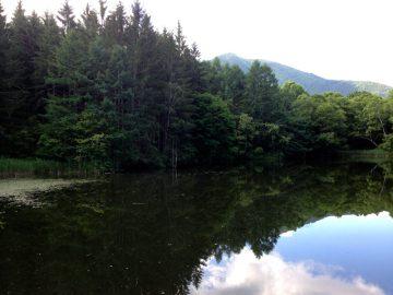 飯縄山を映す名もない池