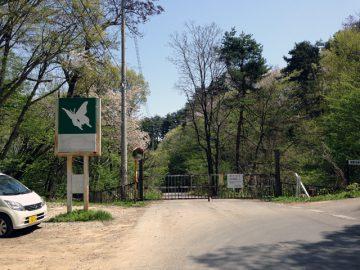 今は大峰城に行く道は閉鎖されている