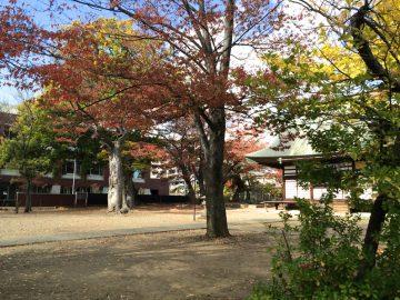 長野市、宇達神社の素敵な景色