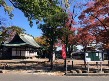 秋の宇達神社